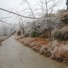 2008-01-Dongshan-256_1200.jpg