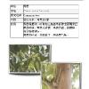 booklet_page_10.jpg