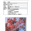 booklet_page_11.jpg