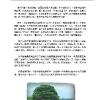 booklet_page_15.jpg